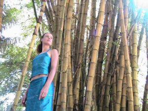 ayabamboo