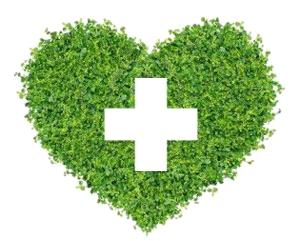 doctor_en_plantas