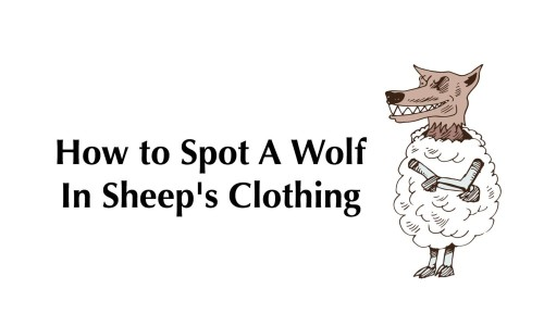 wolf-in-sheep-clothing-1000x600