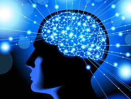 brainuse