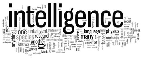 intelligence-1